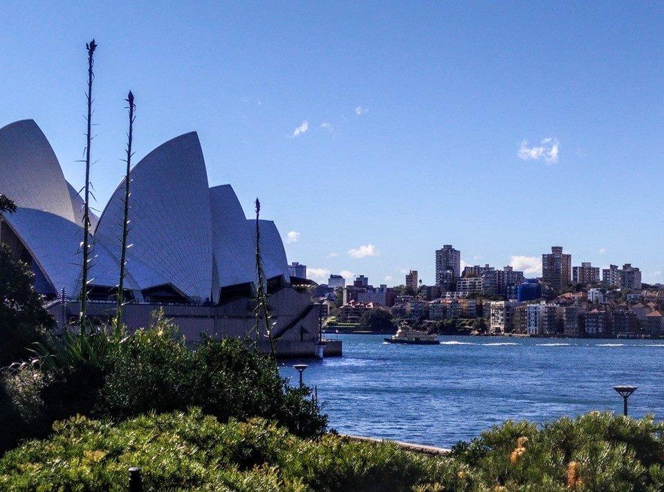 3 opera house (1)