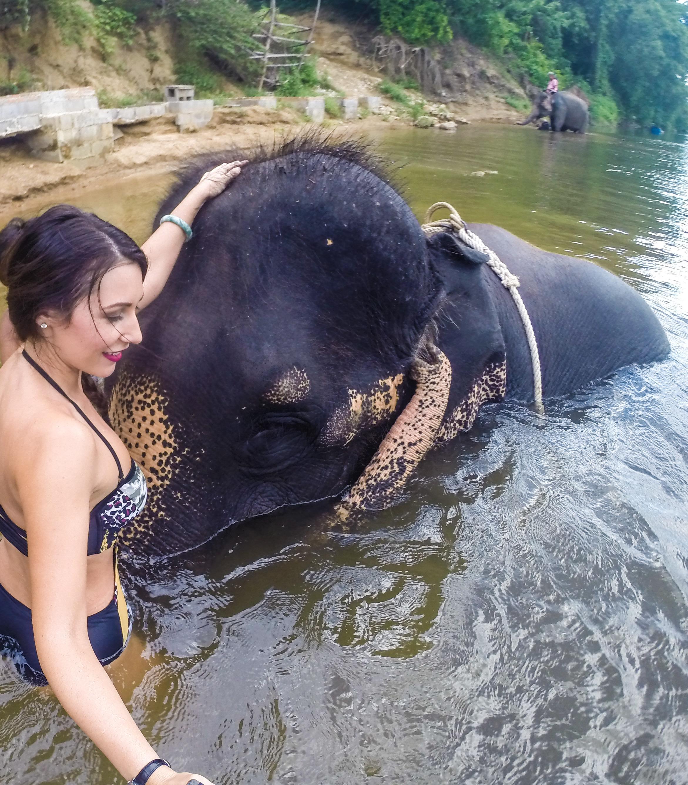 8 elephant bath (4)