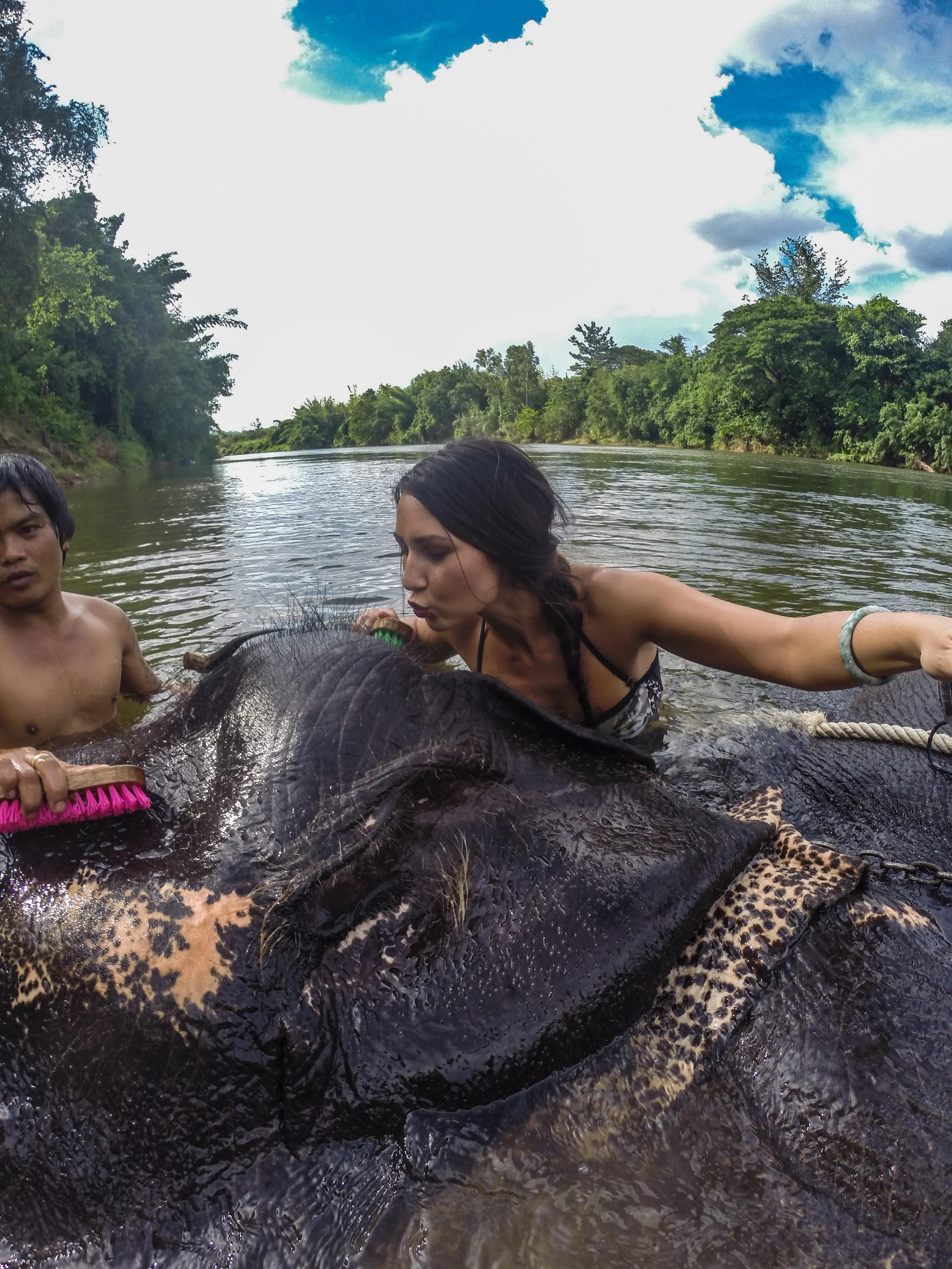 8 elephant bath (6)