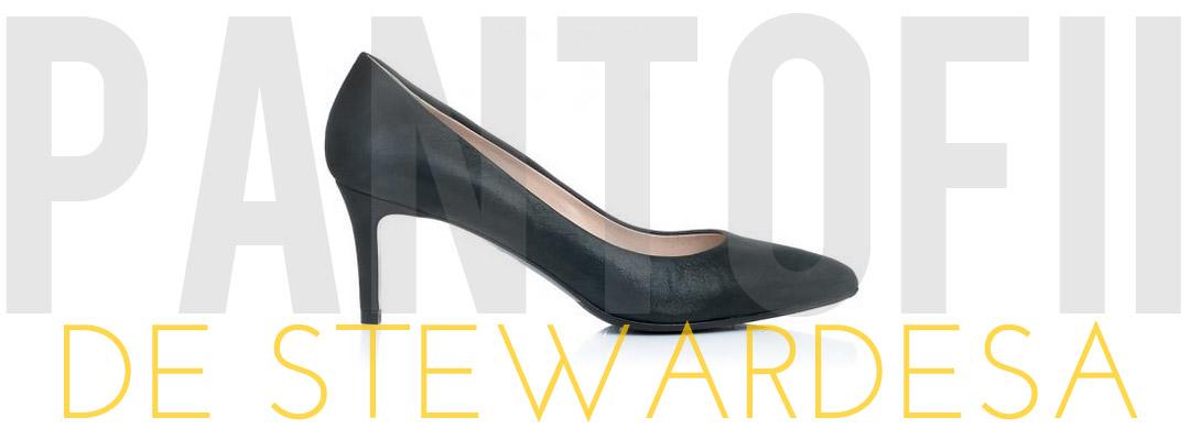 Pantofii de stewardesa